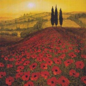 steve-thoms-poppy-field